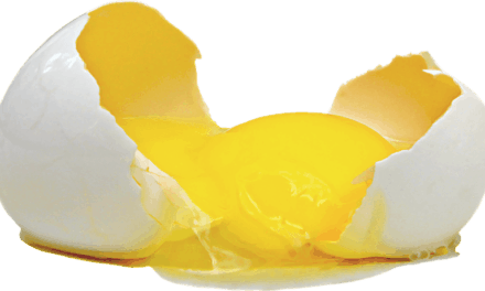 3 Eggs Daily