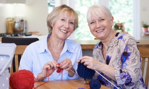 time to craft buddies knitting together